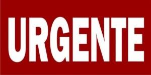 Covid-19: Senado aprova auxílio emergencial de R$ 600; veja os requisitos