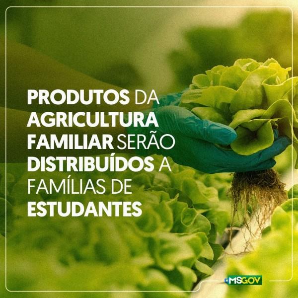 Produtos da agricultura familiar serão distribuídos a família de estudantes