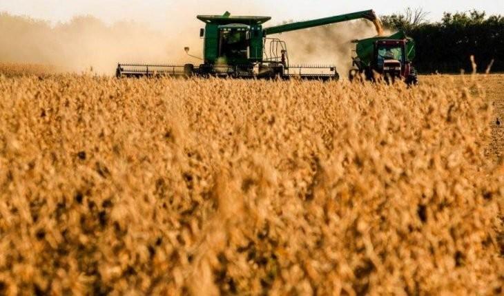 Produtores de soja têm menos de um mês para cadastrar área de plantio
