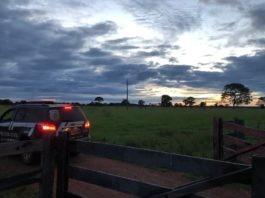 Polícia Civil prende investigado por estelionato na compra de máquinas agrícolas