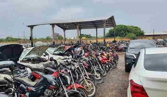 Lotes poderão ser visitados em pátio localizado em Campo Grande