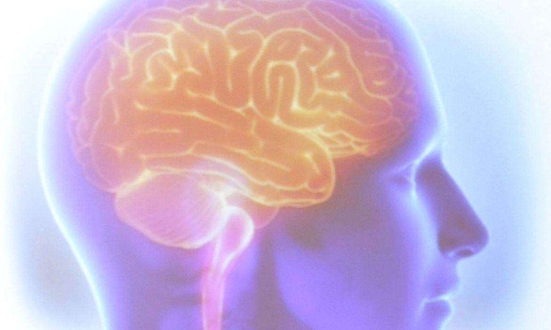 Maio Cinza chama atenção para o câncer de cérebro
