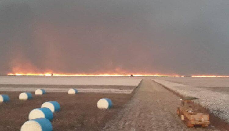 Incêndio de grandes proporções atinge o Parque Nacional das Emas