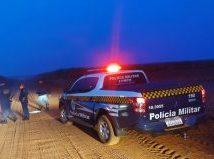 Cassilândia: Polícia Militar prende dois homens por cometerem abigeato