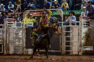 O competidor Alisson de Souza, de Taubaté (SP), campeão do 25º Barretos International Rodeo- Foto André Monteiro